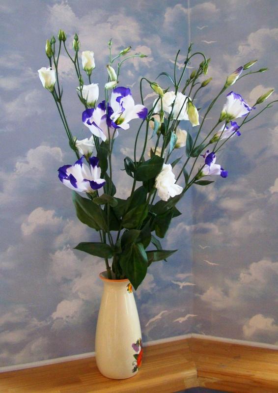 Комнатный цветок похожий на колокольчик: фото и названия 35