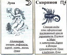 скорпион плюсы и минусы картинка этого